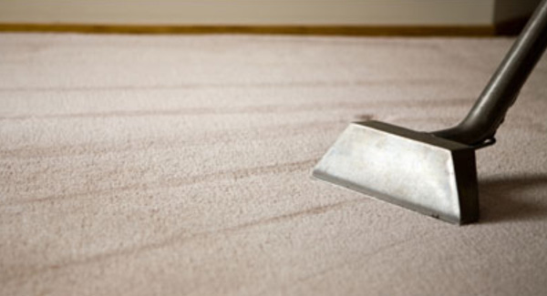 Image result for Steam Carpet Cleaning Services